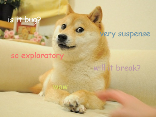 exploratory_testing_doge_2