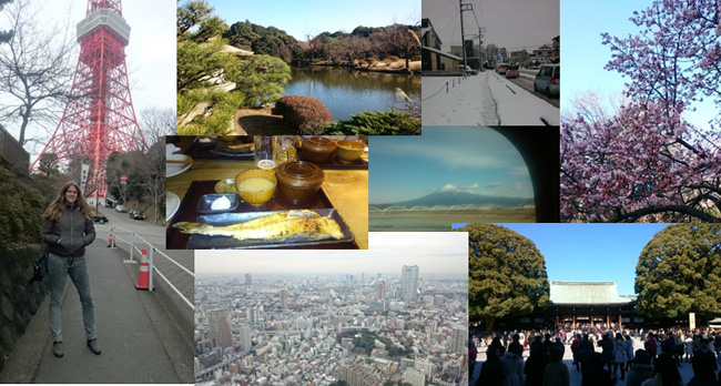 Tokyo Tower, Shinjuku Gyoen Garden, Snowy Kawagoe, Mount Fuji seen from the high speed rail, Meju Jingu Temple